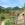 Sommerfrsiche, Sommerfrische Steiermark, Sommerfrische Almenland Teichalm Sommeralm Brandlucken - Kornreitherhaus 5