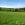 Sommerfrsiche, Sommerfrische Steiermark, Sommerfrische Almenland Teichalm Sommeralm Brandlucken - Kornreitherhaus 15